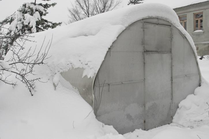 Куры зимой в теплице из поликарбоната, правила содержания и ухода для хорошей яйценоскости