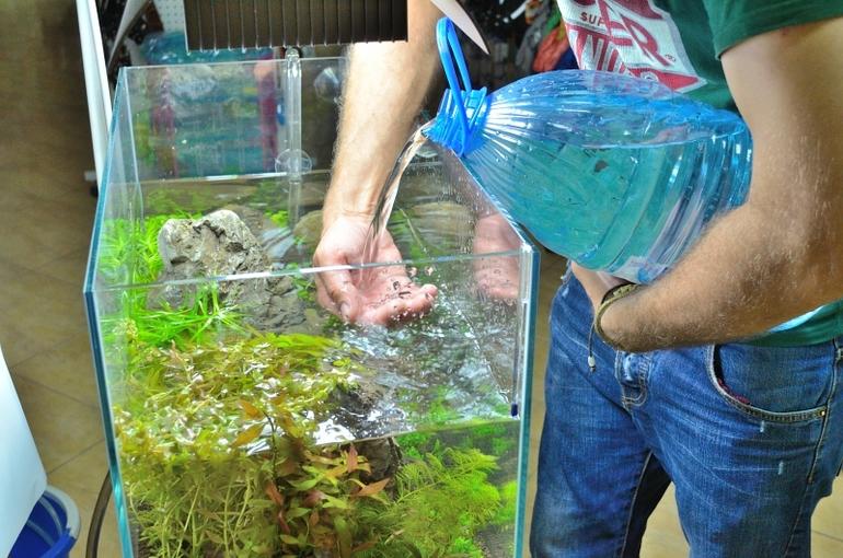 Подготовка аквариума для рыбок