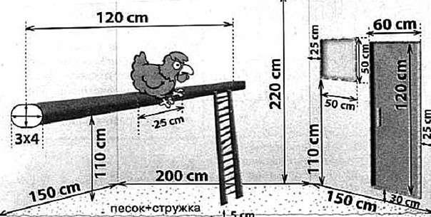расзмеры птичника в курятнике на 10-20 кур